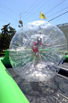 Hamster Balls, Human Hamster Balls, Outdoor, Fun, Summer, Family Fun, Family, Go-Karts, go karts, birthday parties, birthday party, rockwall, rollerskating, team building, corporate outings